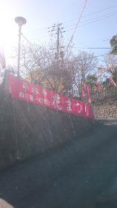 ppp花まつり2019